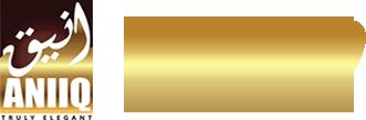 aniiq-logo.png